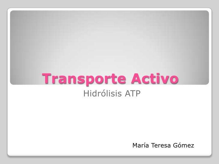 Transporte Activo<br />Hidrólisis ATP<br />María Teresa Gómez<br />