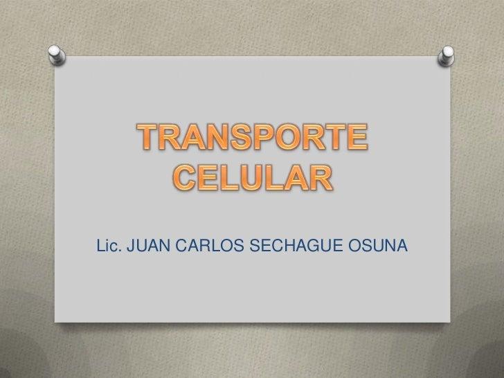 Lic. JUAN CARLOS SECHAGUE OSUNA