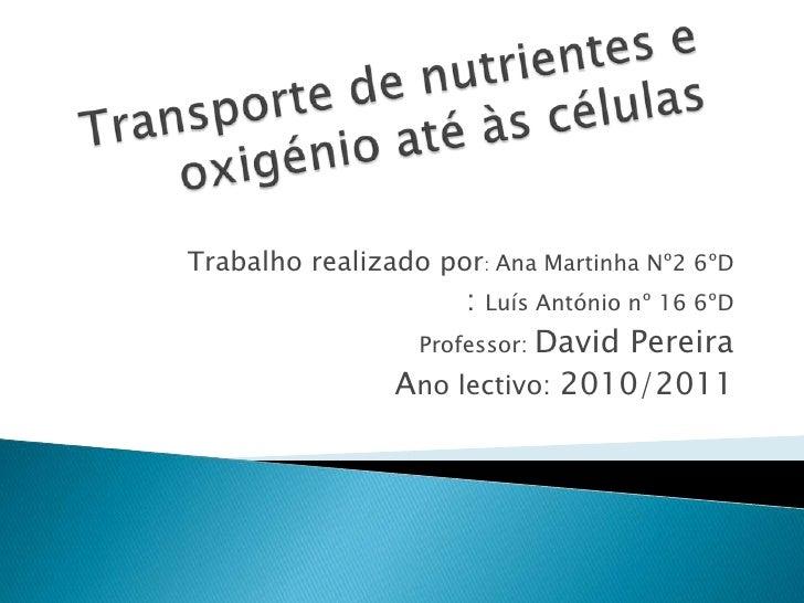 Transporte de nutrientes e oxigénio até às células<br />Trabalho realizado por: Ana Martinha Nº2 6ºD <br />               ...