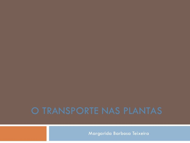 Margarida Barbosa Teixeira O TRANSPORTE NAS PLANTAS