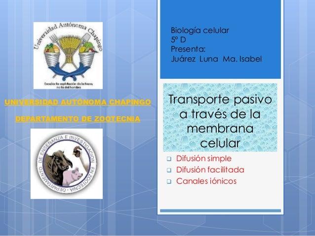 Biología celular 5° D Presenta: Juárez Luna Ma. Isabel  UNIVERSIDAD AUTÓNOMA CHAPINGO DEPARTAMENTO DE ZOOTECNIA  Transport...