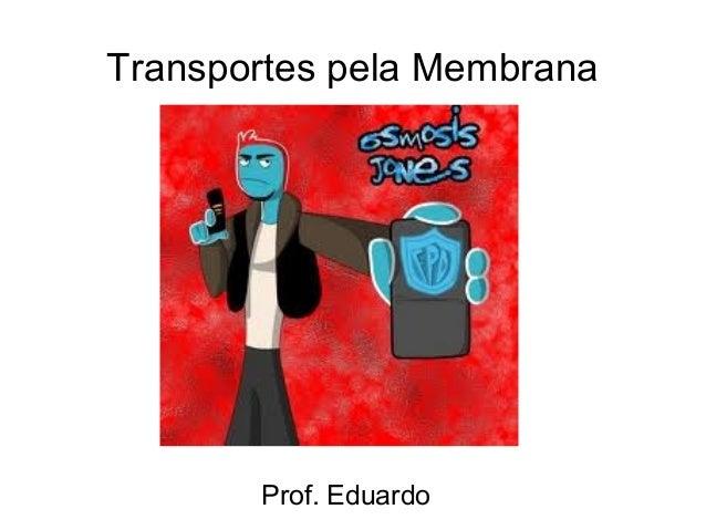 Transportes pela Membrana       Prof. Eduardo