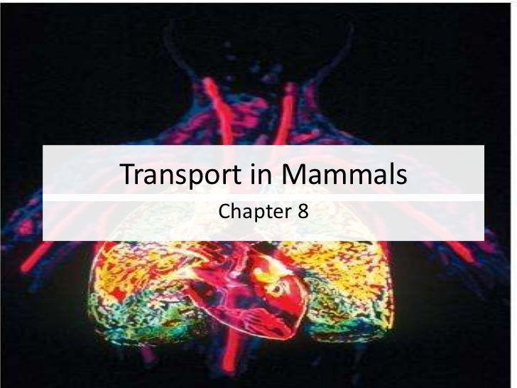 Transport in Mammals <br />Chapter 8<br />1<br />