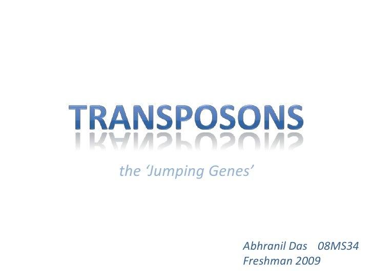 Transposons<br />the 'Jumping Genes'<br />Abhranil Das08MS34<br />Freshman 2009<br />