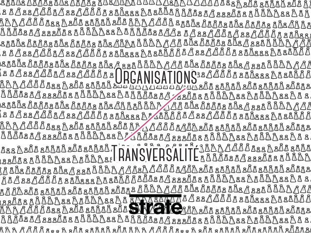 Organisations Transversalité