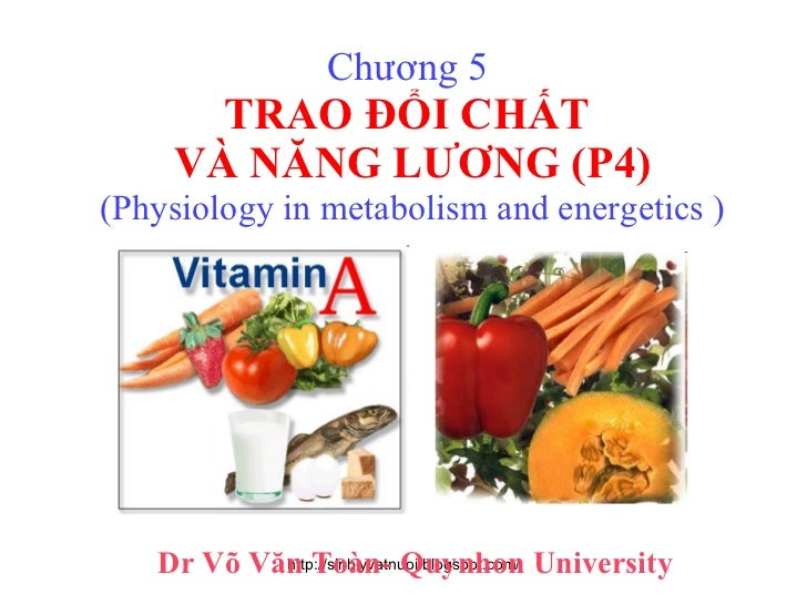 Chương 5  TRAO ĐỔI CHẤT  VÀ NĂNG LƯƠNG (P4) (Physiology in metabolism and energetics ) Dr Võ Văn Toàn- Quynhon University