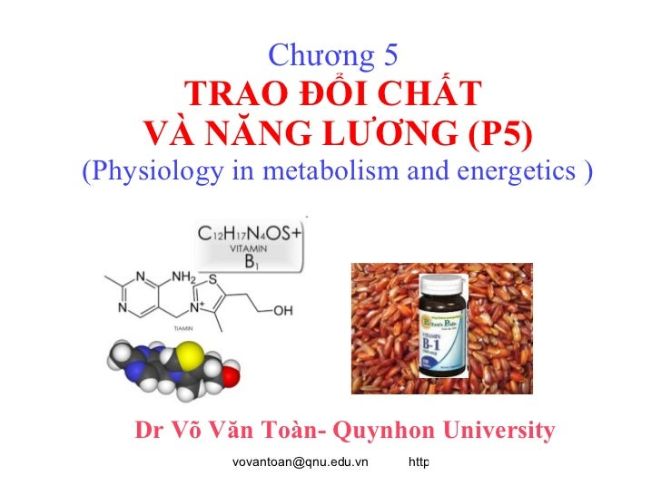 Chương 5  TRAO ĐỔI CHẤT  VÀ NĂNG LƯƠNG (P5) (Physiology in metabolism and energetics ) Dr Võ Văn Toàn- Quynhon University
