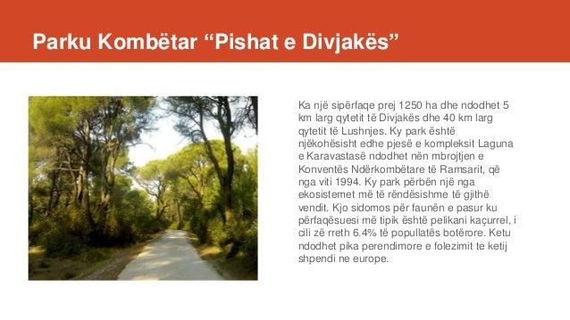 """Parku Kombëtar """"Pishat e Divjakës"""" Ka një sipërfaqe prej 1250 ha dhe ndodhet 5 km larg qytetit të Divjakës dhe 40 km larg ..."""