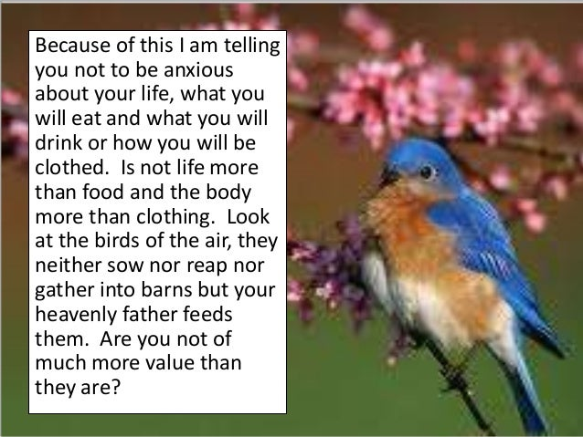 Because of this I am tellingyou not to be anxiousabout your life, what youwill eat and what you willdrink or how you will ...