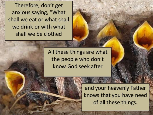 """Therefore, don't get anxious saying, """"Whatshall we eat or what shall  we drink or with what   shall we be clothed         ..."""