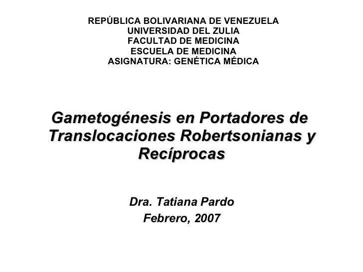 Gametogénesis en Portadores de  Translocaciones Robertsonianas y Recíprocas Dra. Tatiana Pardo Febrero, 2007 REPÚBLICA BOL...