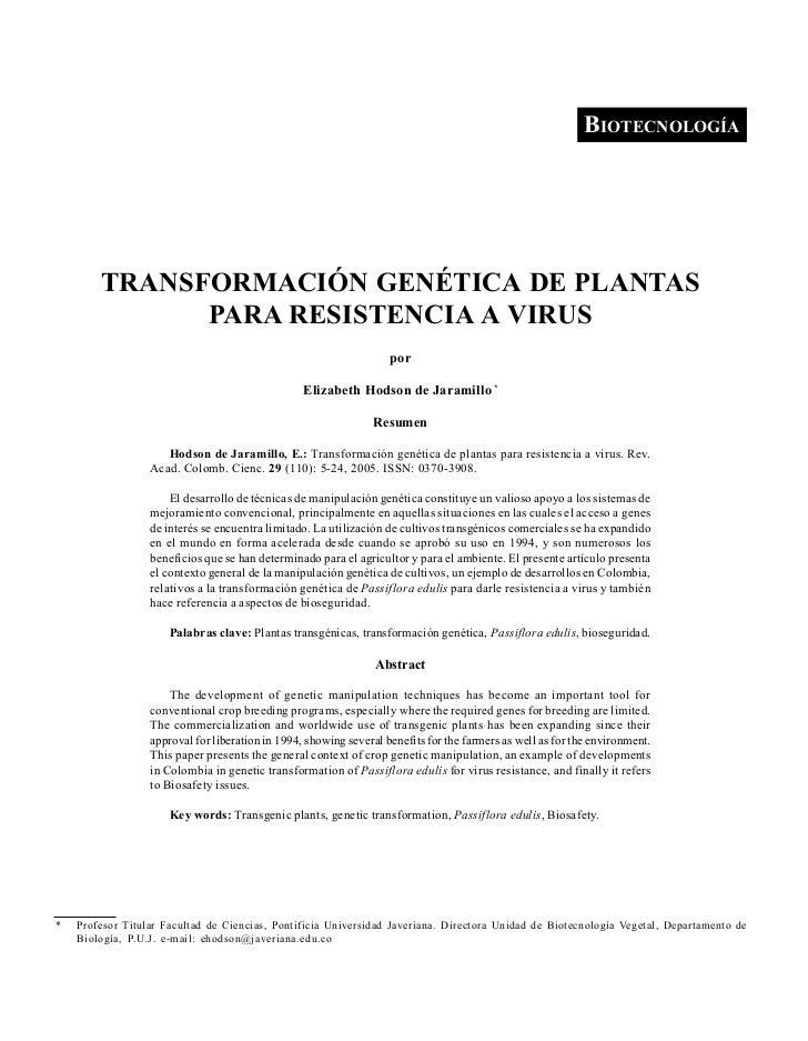 HODSON DE JARAMILLO, E.: TRANSFORMACIÓN GENÉTICA DE PLANTAS PARA RESISTENCIA A VIRUS                                      ...