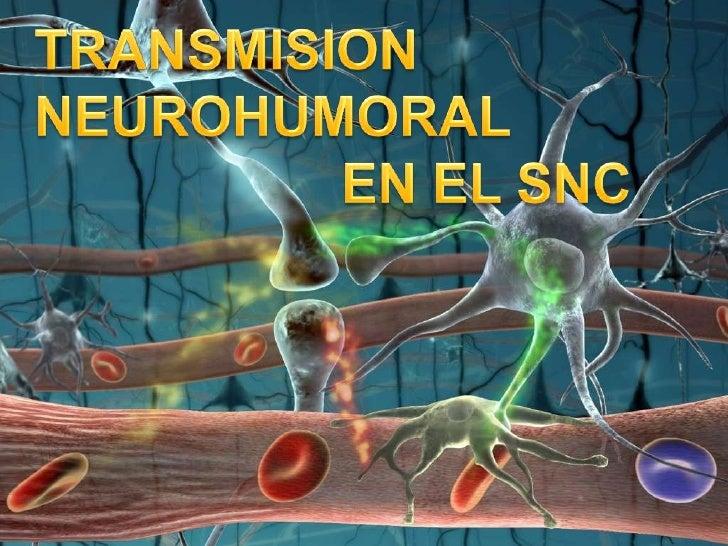 TRANSMISION <br />NEUROHUMORAL <br />EN EL SNC<br />