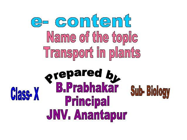 Science worksheet & ppt: transportation system in plants.