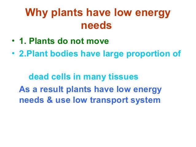 Plant transport advanced biology chapter 22 notes. Ppt download.