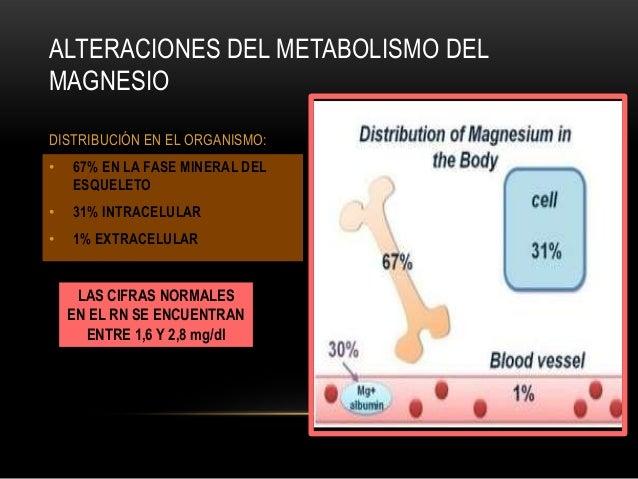 Carbamazepina metabolismo