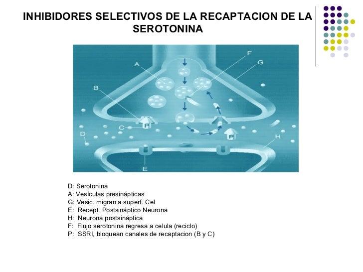 INHIBIDORES SELECTIVOS DE LA RECAPTACION DE LA                 SEROTONINA       D: Serotonina       A: Vesículas presinápt...