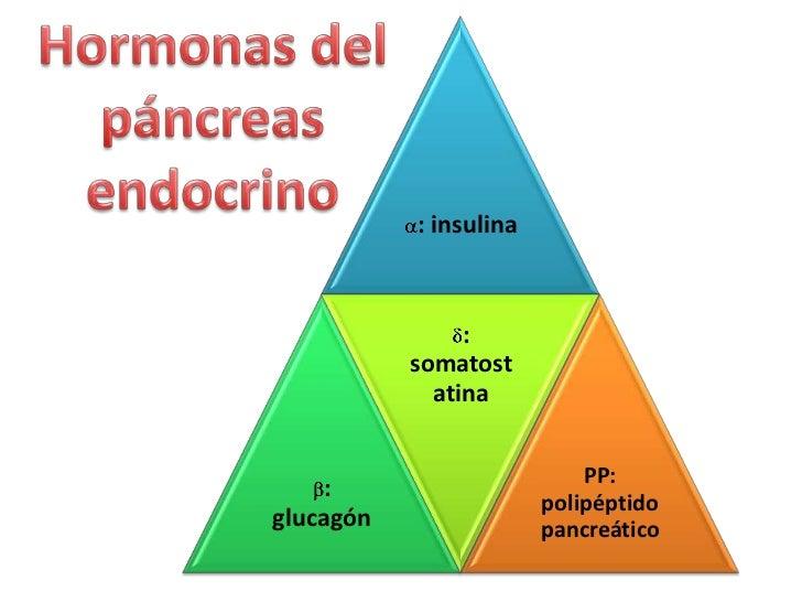 Trastornos del páncreas endocrino