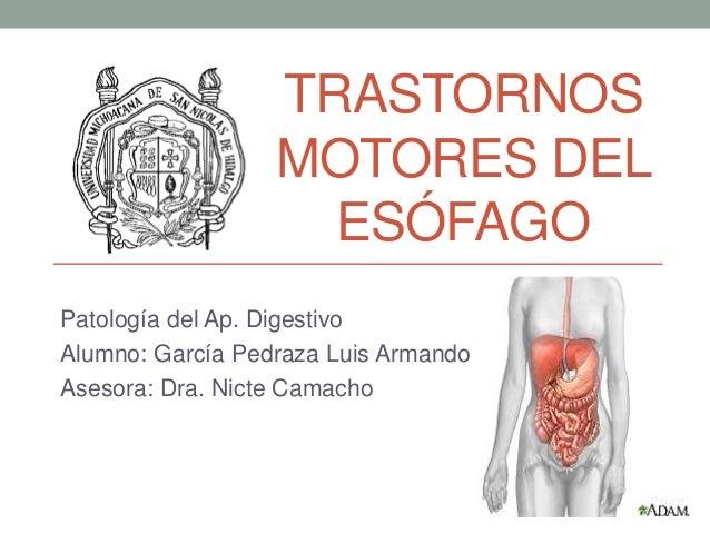 TRASTORNOS MOTORES DEL ESÓFAGO Patología del Ap. Digestivo Alumno: García Pedraza Luis Armando Asesora: Dra. Nicte Camacho
