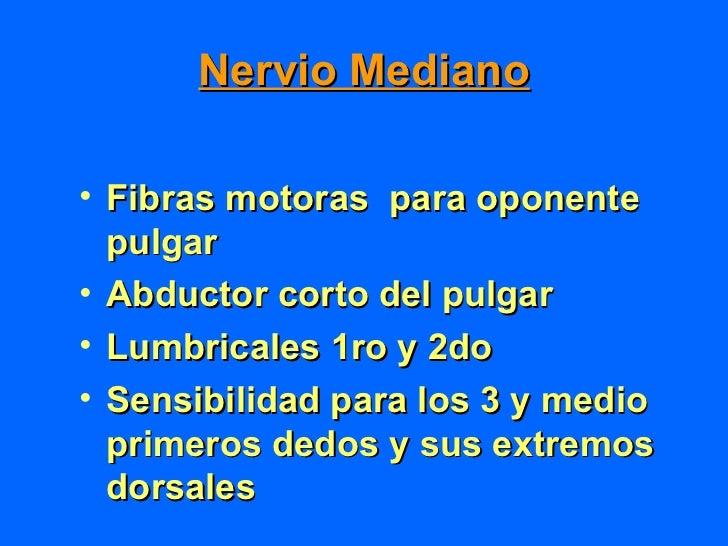 Diagnóstico•   Exploración clínica•   Laboratorio•   Rxs•   Emg•   Velocidad de conducción    nerviosa