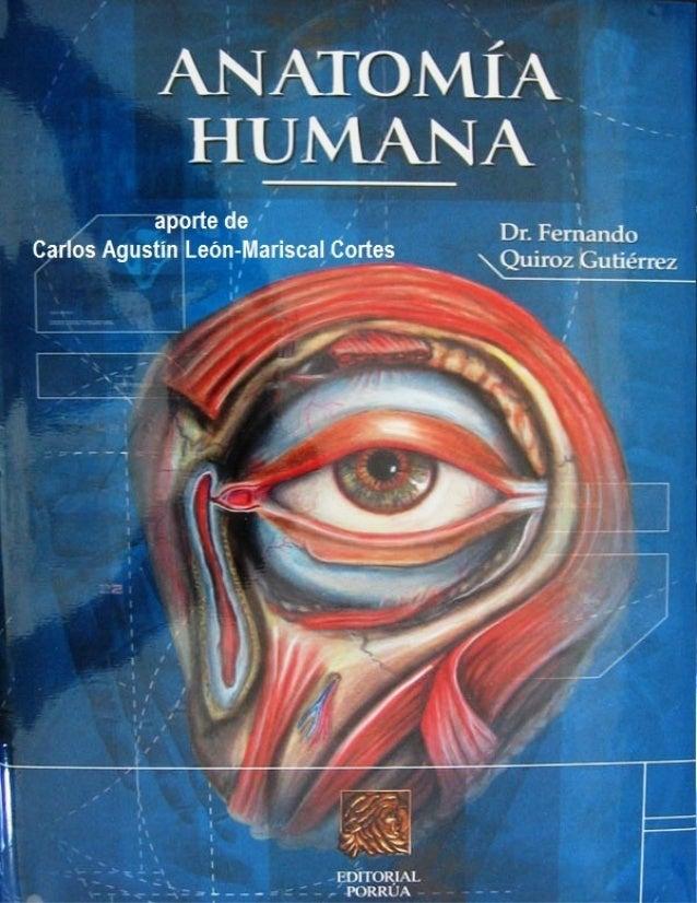 Tratado anatomia humana   f. quiroz - tomo1