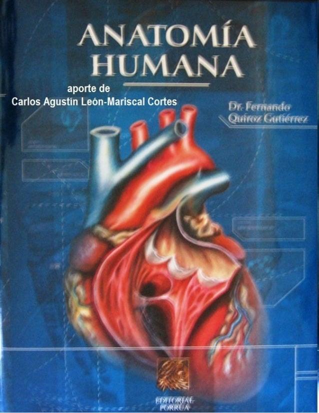 Tratado anatomia humana   f. quiroz - tomo2