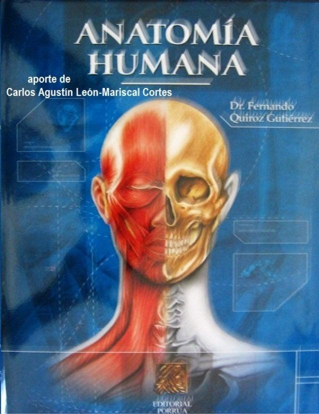 Tratado anatomia humana   f. quiroz - tomo3