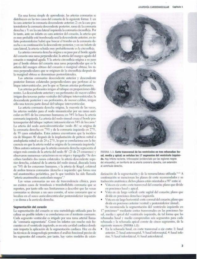 Tratado de cardiologia instituto nacional de cardiologia 1ed