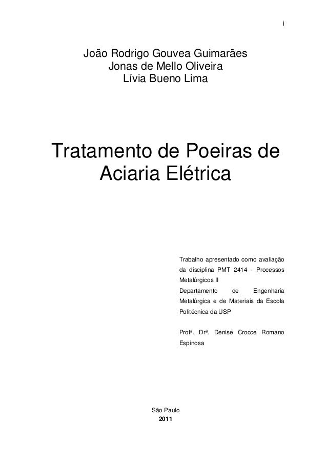 i  João Rodrigo Gouvea Guimarães  Jonas de Mello Oliveira  Lívia Bueno Lima  Tratamento de Poeiras de  Aciaria Elétrica  T...