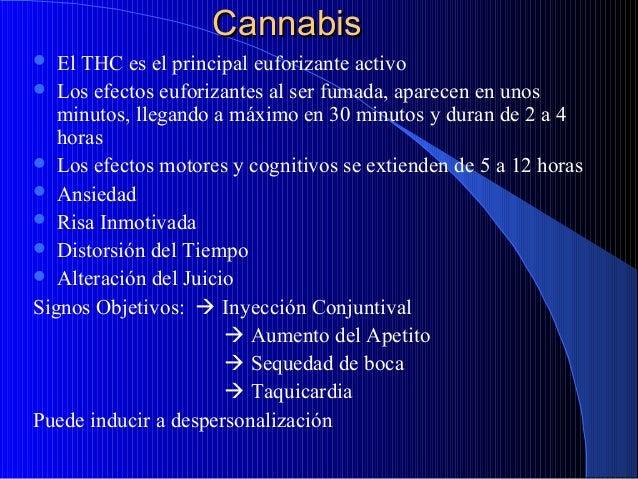 Cannabis El THC es el principal euforizante activo  Los efectos euforizantes al ser fumada, aparecen en unos minutos, lle...
