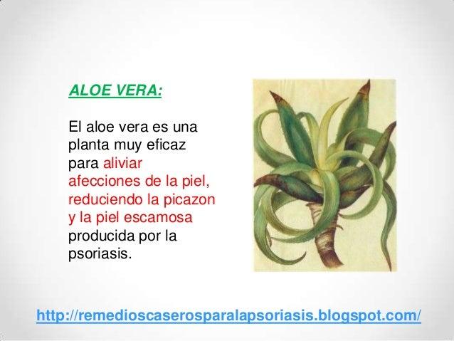 ALOE VERA:El aloe vera es unaplanta muy eficazpara aliviarafecciones de la piel,reduciendo la picazony la piel escamosapro...