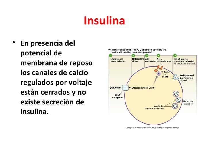 Armario Limpieza ~ Tratamiento con insulina