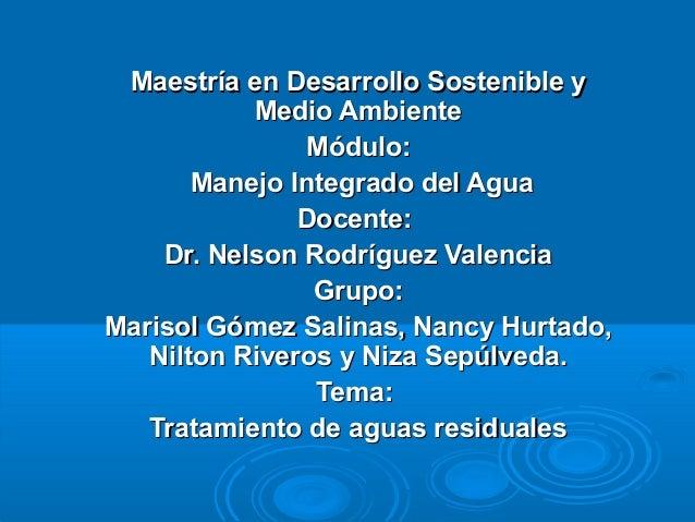 Maestría en Desarrollo Sostenible yMaestría en Desarrollo Sostenible y Medio AmbienteMedio Ambiente Módulo:Módulo: Manejo ...