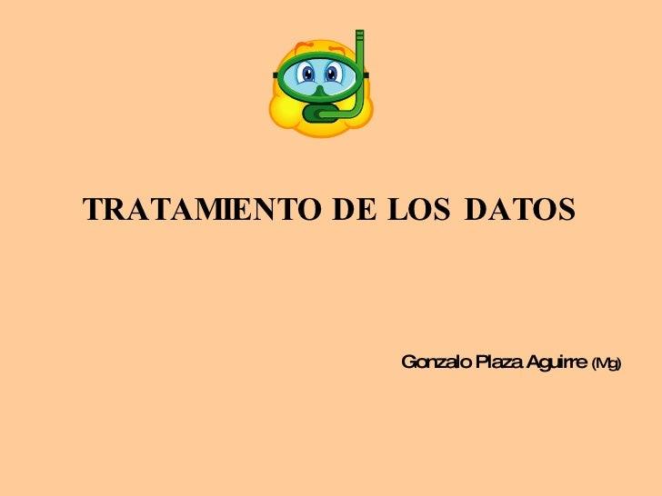 TRATAMIENTO DE LOS DATOS Gonzalo Plaza Aguirre  (Mg)