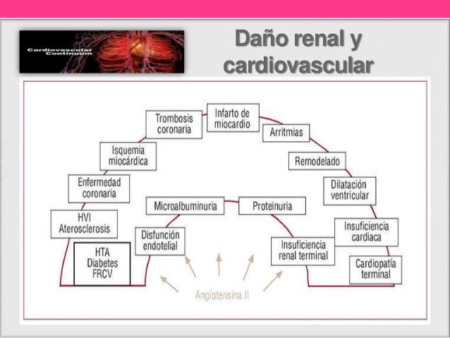 Tratamiento de nefropatía diabética Slide 3