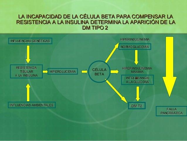 LA INCAPACIDAD DE LA CÉLULA BETA PARA COMPENSAR LALA INCAPACIDAD DE LA CÉLULA BETA PARA COMPENSAR LARESISTENCIA A LA INSUL...