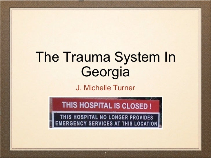 The Trauma System In Georgia <ul><li>J. Michelle Turner </li></ul>