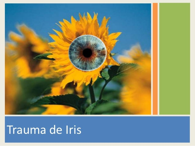 Trauma de Iris