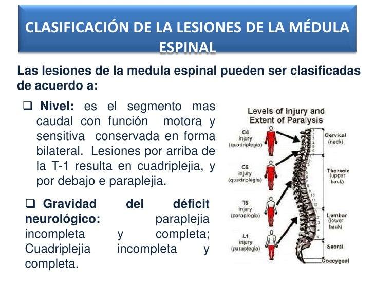 CLASIFICACIÓN DE LA LESIONES DE LA MÉDULA                  ESPINALLas lesiones de la medula espinal pueden ser clasificada...
