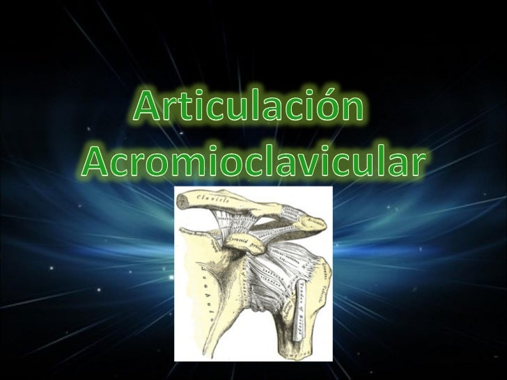 A -Transversa del cuerpo >> 50 % B -Borde inferior glenoideo >> 10 % C -Intraarticular glenoides >> 10% D -Cuello glen...