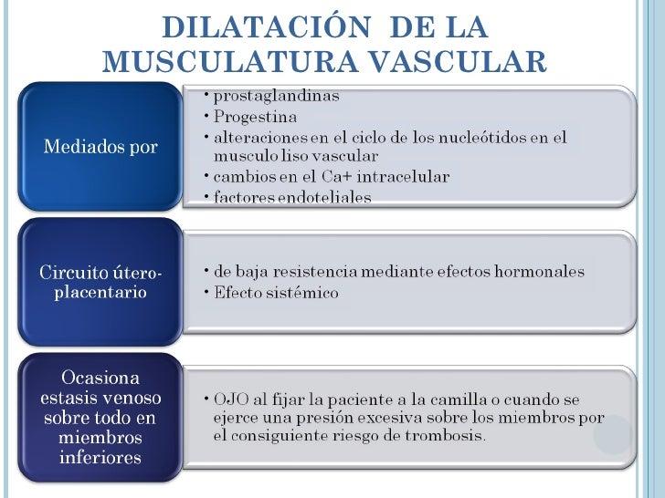 DILATACIÓN  DE LA MUSCULATURA VASCULAR