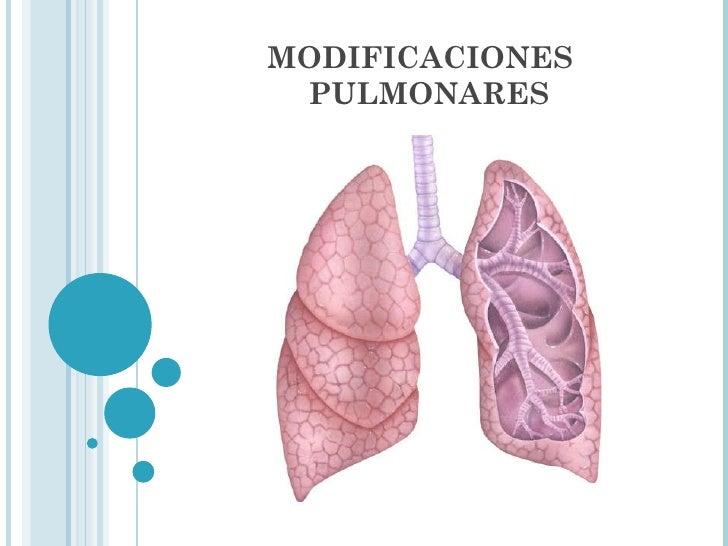 MODIFICACIONES  PULMONARES