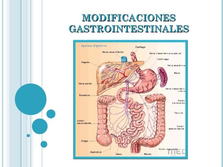MODIFICACIONES GASTROINTESTINALES