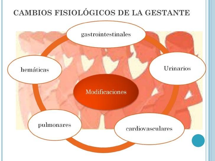 CAMBIOS FISIOLÓGICOS DE LA GESTANTE