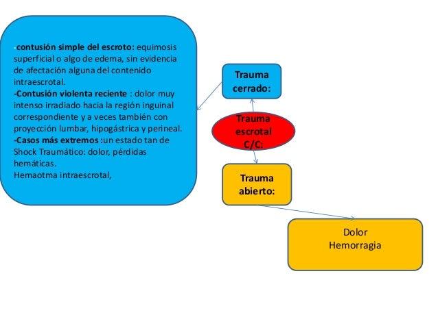 Trauma escrotal C/C: -contusión simple del escroto: equimosis superficial o algo de edema, sin evidencia de afectación alg...