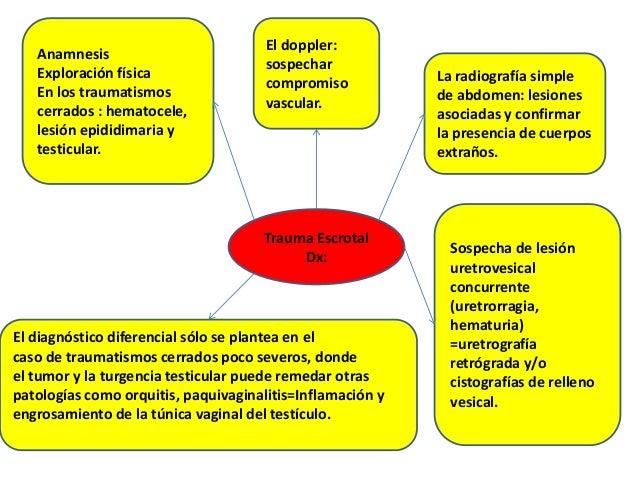 Trauma Escrotal Dx: Anamnesis Exploración física En los traumatismos cerrados : hematocele, lesión epididimaria y testicul...