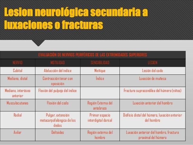 EVALUACIÓN DE NERVIOS PERIFÉRICOS DE LAS EXTREMIDADES SUPERIORES NERVIO MOTILIDAD SENSIBILIDAD LESION Cubital Abducción de...