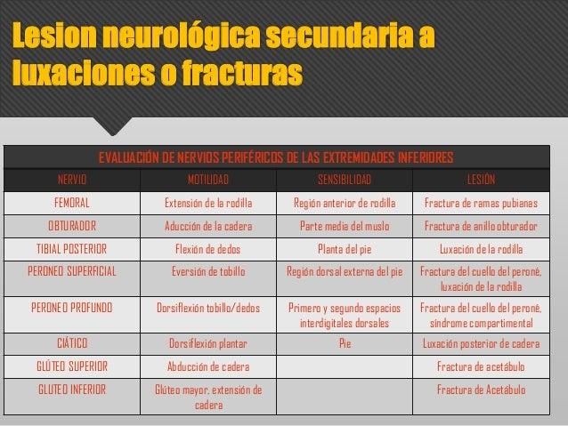 EVALUACIÓN DE NERVIOS PERIFÉRICOS DE LAS EXTREMIDADES INFERIORES NERVIO MOTILIDAD SENSIBILIDAD LESIÓN FEMORAL Extensión de...