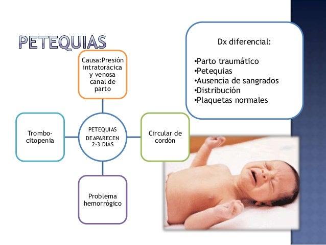 NGS No req tto Lesiones induradas o circunscritas Macrosomía, extraídos con fórceps, parto prolongado Hipoxia, isquemia lo...