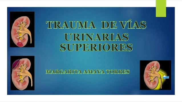 Trauma Renal representa 1-5% de los traumas abdominales Orden de Frecuencia y en referencia al aparato Genitourinario el ó...